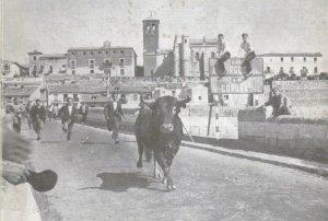 El toro de la Vega en 1970.jpg